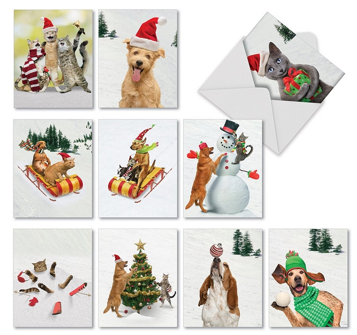 Holiday Greeting Cards for Pet Related Businesses - For Pet Lovers ...